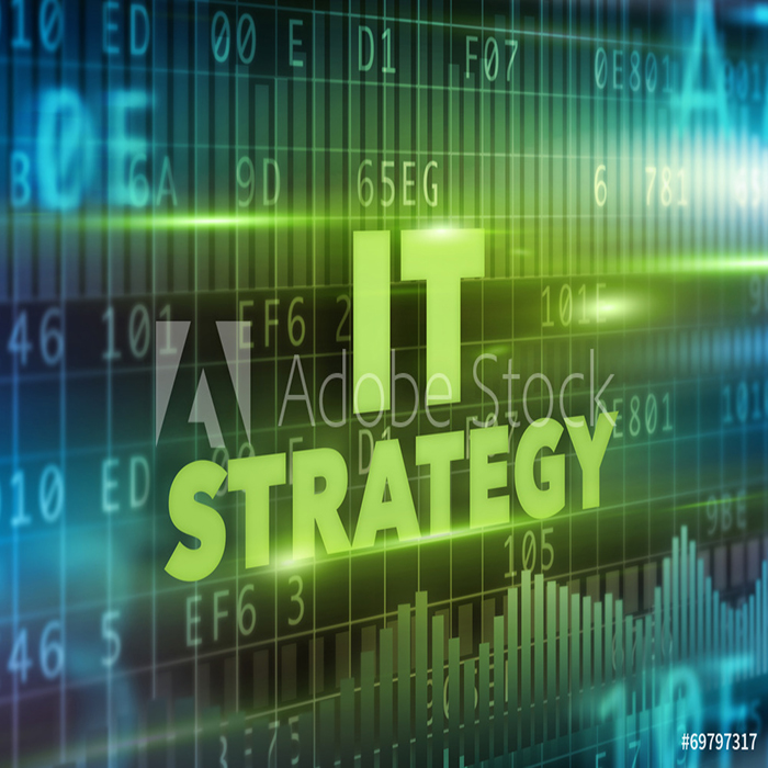 IT Organization Aligns Strategy, Structure, Goals and Rewards